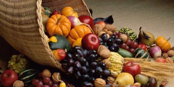 Harvest cornocopia