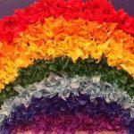 rainbow-ribbons-thandiwe