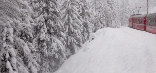 Train in snow — Carol Kreis