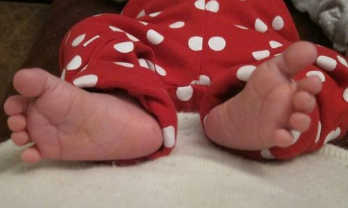 Cora's feet – 2 weeks