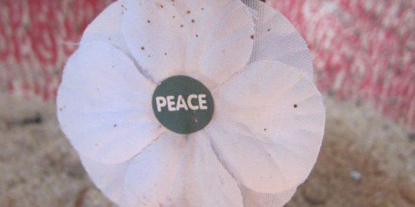 St James Avebury, Peace poppy, Wiltshire (25)
