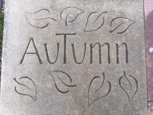 Autumn, Basingstoke UK