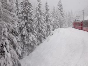 Train in snow -- Carol Kreis