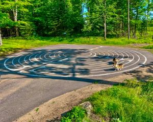 Dogs walking labyrinth -- Warren Lynn, USA