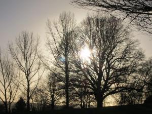 Sunrise, Kent UK -- photo by Ana Gobledale