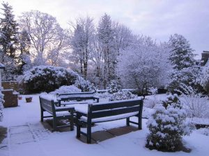 Waiting for spring, Windermere Centre, Cumbria UK -- by Ana Gobledale