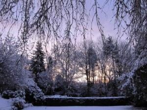 winter sunrise in snow -- photo by Ana Gobledale