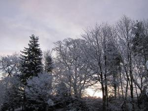 Winter light, Cumbria UK -- by Ana Gobledale