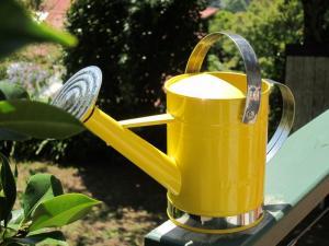 Melbourne garden watering can, Australia -- Ana Gobledale