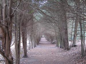 Polesdon Lacey UK -- Ana Gobledale