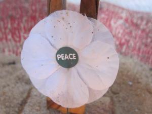 St James Avebury, Peace poppy, Wiltshire - Ana Gobledale, UK