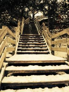 Winter stairway -- photo by Thandiwe Dale-Ferguson