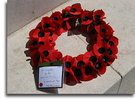 Remembrance Day poppies, London - Ana Gobledale, UK